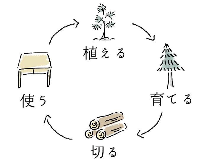 森の再生サイクル