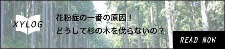 花粉症の一番の原因!どうして杉の木を伐らないの?